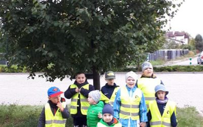 Przedszkolaki i Dzień Drzewa