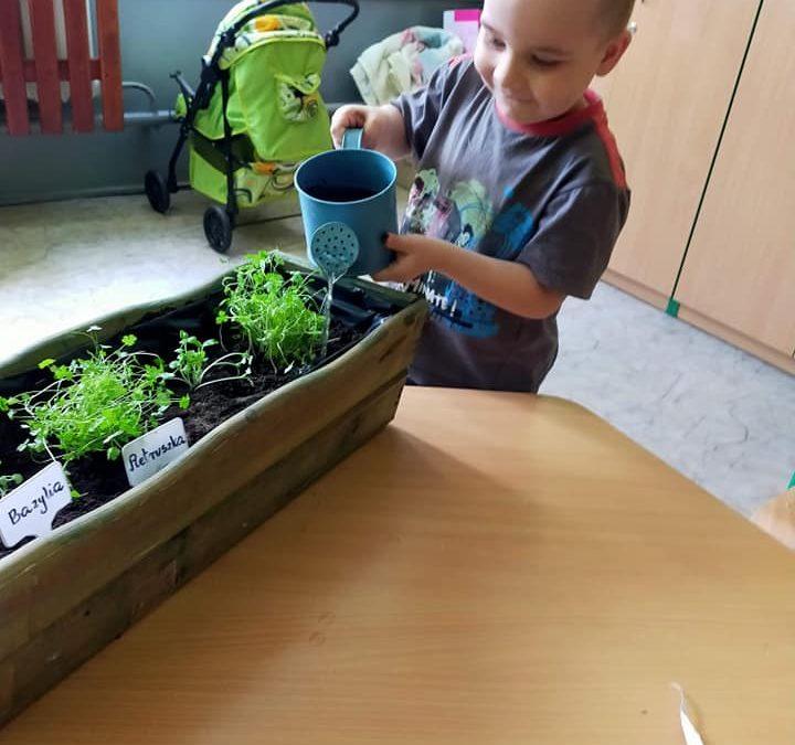 Dzień Ogrodnika w przedszkolu